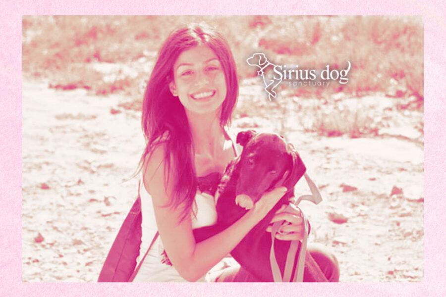 Design for Sirius Dog Sanctuary